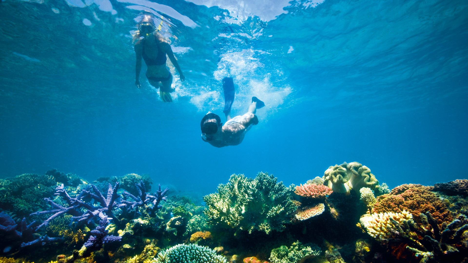 c Tourism and Events Queensland